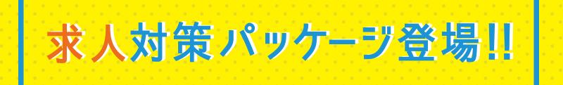 求人対策パッケージ登場!!